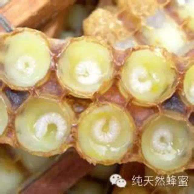什么是蜂王浆