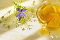蜂蜜的基本介绍