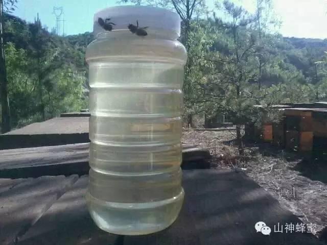 水一样的女人,就要喝清澈如水的上等洋槐蜜