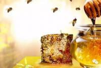 这样吃蜂蜜才不浪费!!!!