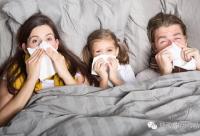 蜂胶对鼻炎、感冒、咽喉肿痛的功效!【居家实用常识】