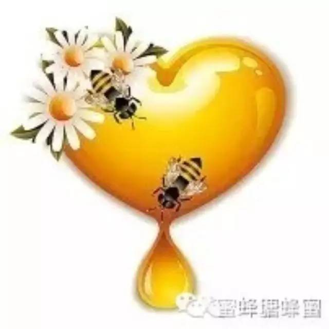 龙眼蜂蜜 蜂蜜怎么去斑 假蜂蜜 comvita蜂蜜 空腹喝蜂蜜水好吗