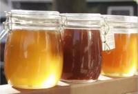 蜂蜜的来之不易  这样的喝才倍加有益