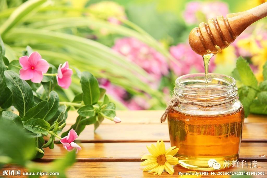 蜂蜜的12大功效及用法,神奇的不得了