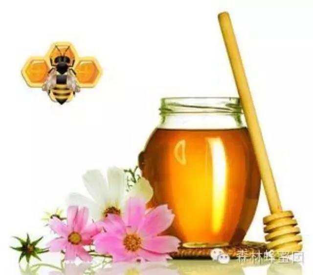 女生蜂蜜 汪氏蜂蜜官网 黄瓜蜂蜜面膜的功效 comvita蜂蜜 蜂蜜塑料瓶厂家