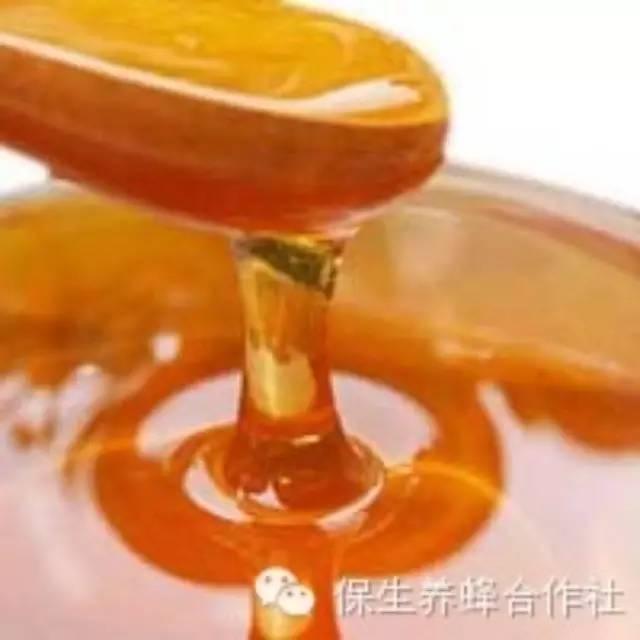 荞麦蜂蜜 纯蜂蜜面膜 制作蜂蜜面膜 康师傅蜂蜜柚子茶价格 蜂蜜和牛奶怎么做面膜