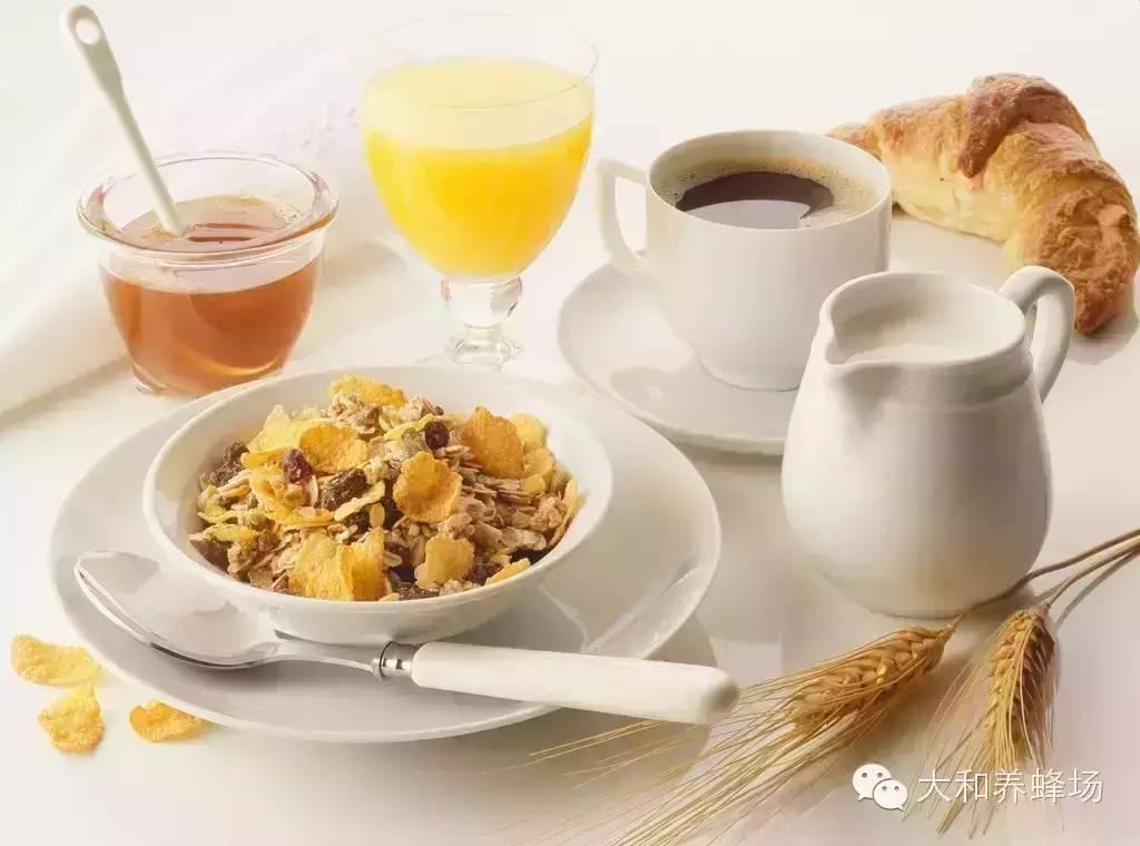 你的早餐怎么吃?看看德国标准营养早餐:蜂蜜+牛奶+面包!
