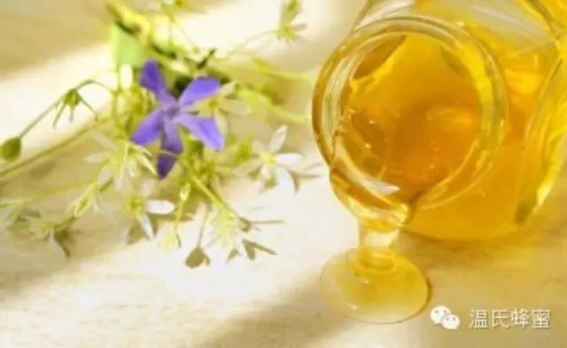 信息 喝蜂蜜水有什么好处 红糖蜂蜜姜茶 蜂蜜不能和什么一起吃 白醋减肥