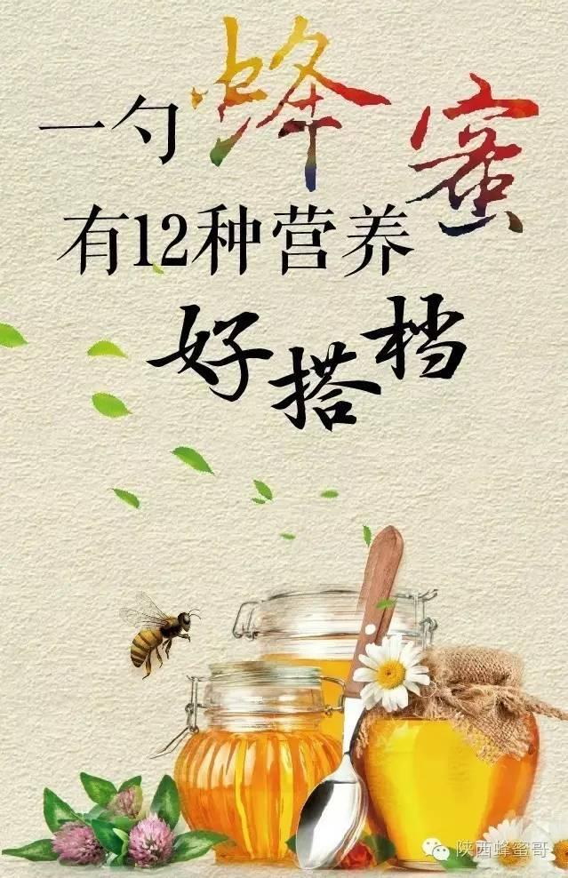 蜂蜜的副作用 蜂蜜怎样美容 蜂蜜保存方法 浙农大1号意蜂饲养 纯蜂蜜多少钱一斤
