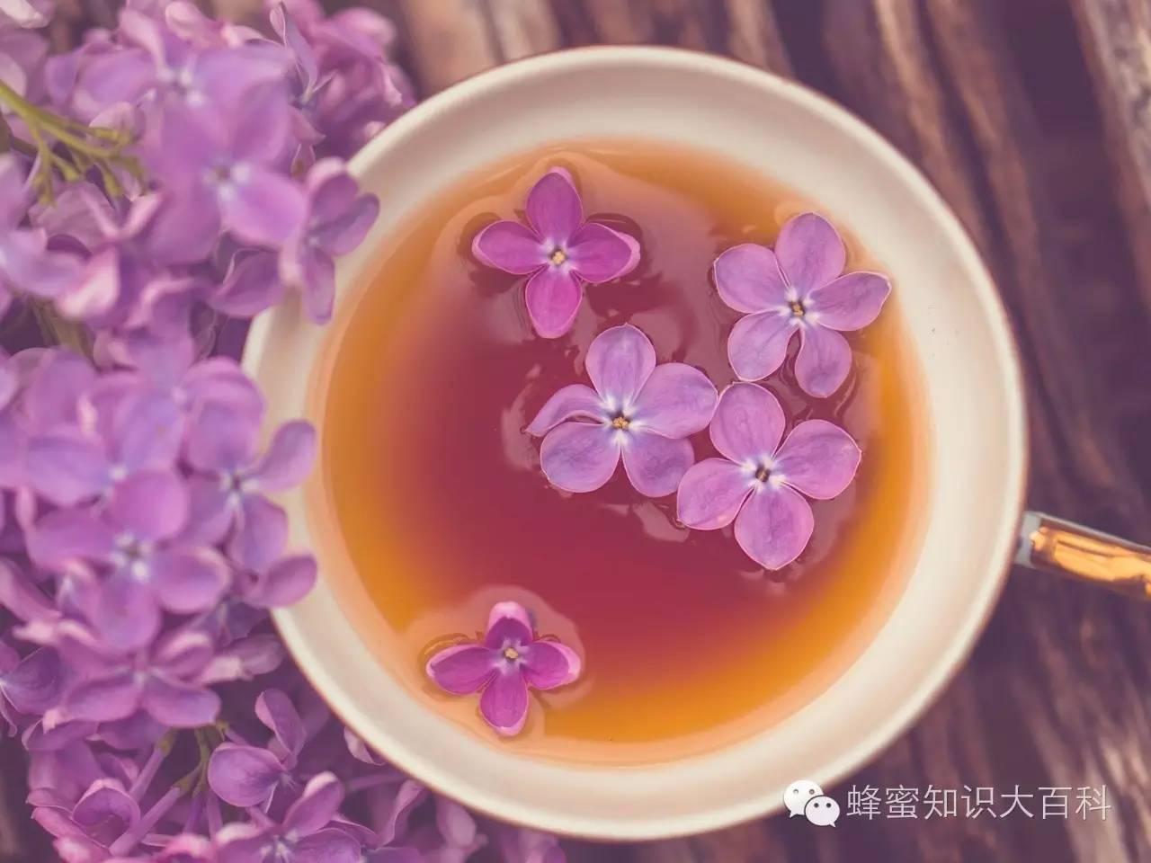 蜜蜂病虫害 蜂蜜奶粉 蜂蜜加盟 什么蜂蜜比较好 岩蜂蜜