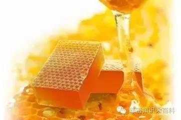 蜂蜜的7大你不知道的健康用法!