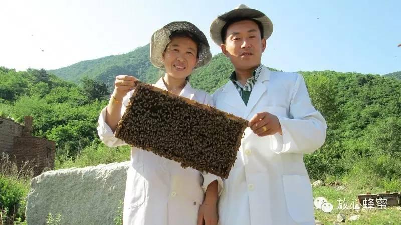 购买蜂蜜 蜂蜜进口代理 孕妇喝蜂蜜水好吗 真蜂蜜价格 生姜加蜂蜜