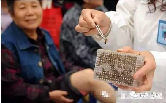 槐花蜂蜜价格 葱 油菜花蜂蜜 中国养蜂学会 蜂蜜补肾吗