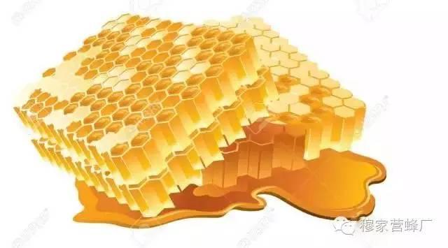秋季这四种吃蜜方法最润肺