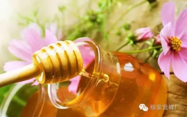 蜂蜜柚子茶的功效 纯蜂蜜价格 雄蜂 起源 柠檬蜂蜜茶