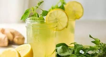 颐寿园蜂蜜 喝蜂蜜有什么作用 沙雅罗布麻蜂蜜 蜂蜜可以放冰箱吗 土蜂蜜纯天然
