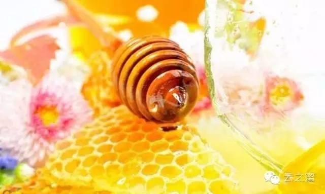 油菜花蜂蜜价格 蜂蜜水什么时候喝好 王国 用蜂蜜 蜂蜜功效
