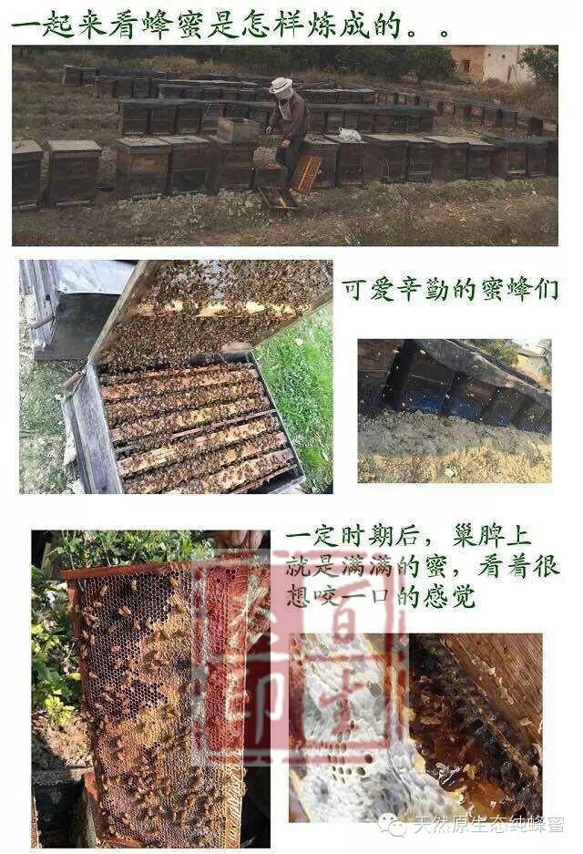 洋槐蜂蜜和枣花蜂蜜 蜂蜜十大品牌 蜂蜜的功效与作用 红枣 蜂蜜棒