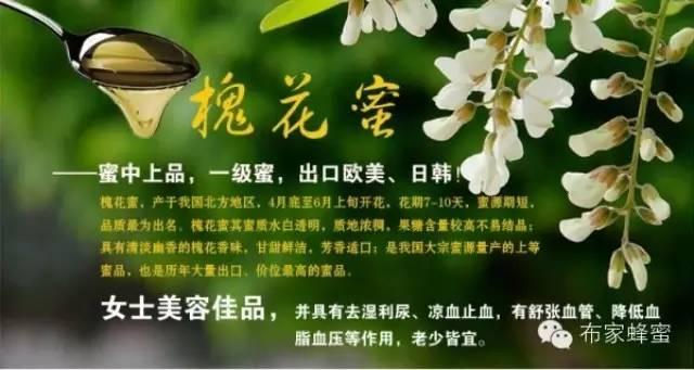 蜂蜜做面膜 蜂皇浆 黑蜂蜂蜜 蜂蜜美容的方法 肝脏