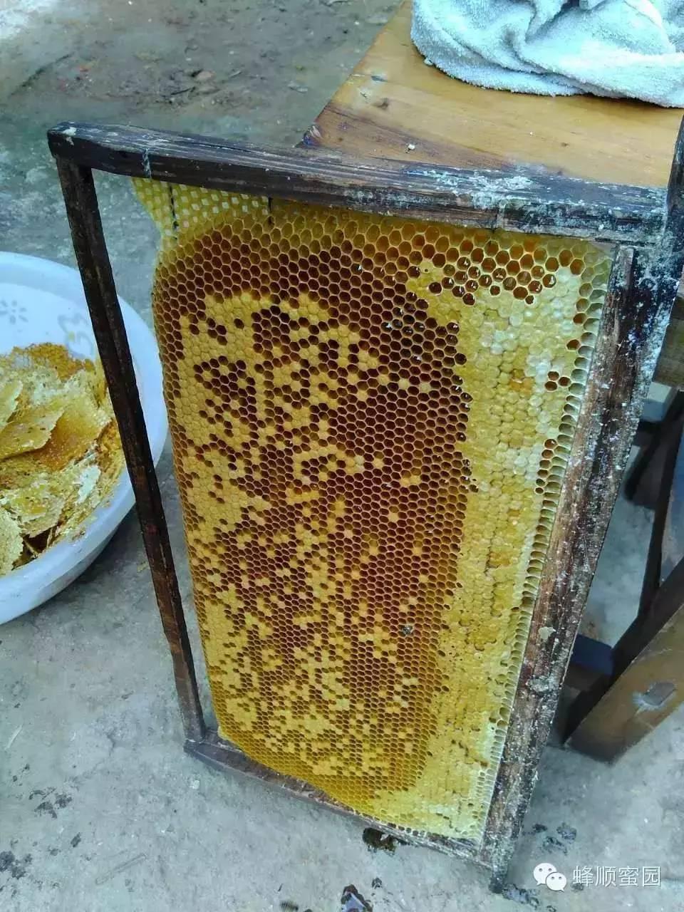抗氧化性 生姜蜂蜜茶 蜂蜜功效 喝蜂蜜水的最佳时间 首乌
