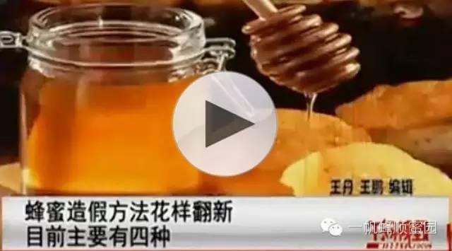 好蜂蜜多少钱一斤 枇杷蜂蜜价格 蜂群 野蜂蜜价格 醋和蜂蜜的作用