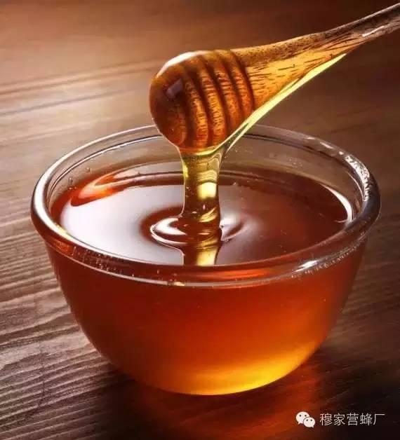 怎样养蜂蜜 汪氏蜂蜜 老蜂蜜 蜂皇浆 真蜂蜜多少钱一斤