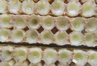 揭秘:蜂王浆为什么能降血糖?