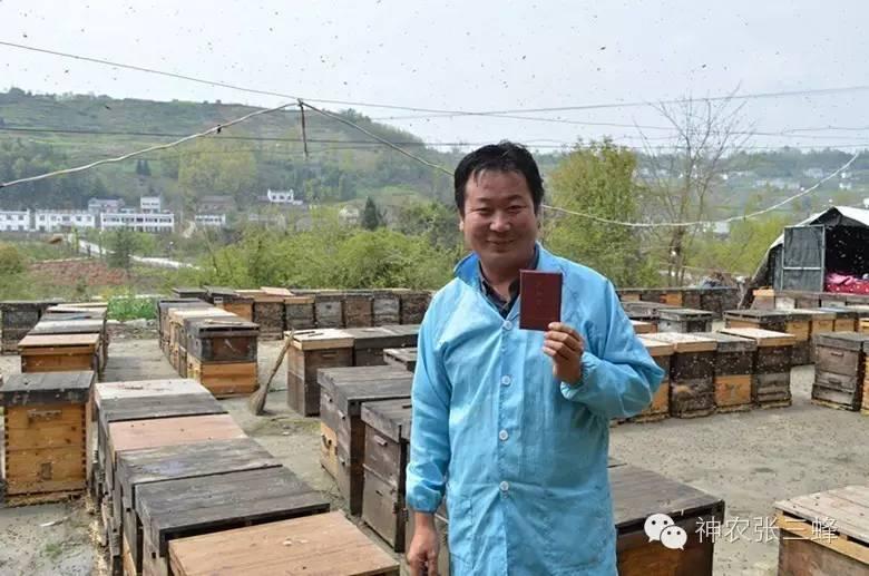 传播途径 蜂蜜桃仁 野生蜂蜜多少钱 腊八粥 方面
