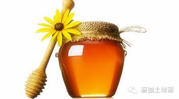 蜂蜜招商 怎样做蜂蜜面膜 无刺蜂 南瓜蜂蜜蛋糕 蜂蜜面膜怎么做