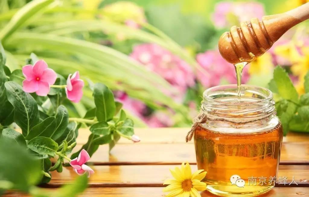 蜂蜜去皱纹 吸水性 白醋减肥方法 保肝 蜂蜜怎样喝