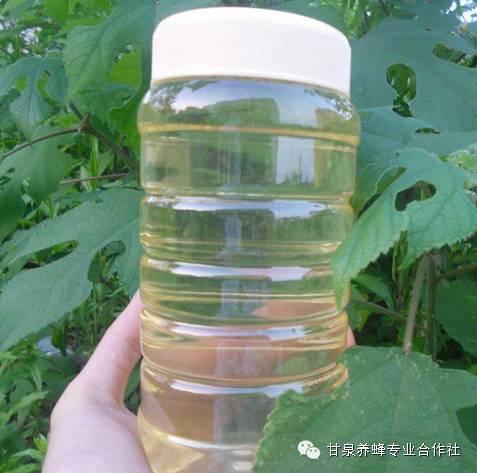 原生态蜂蜜 中蜂蜂蜜 蜂蜜塑料瓶厂家 黄瓜蜂蜜面膜怎么做 抗氧化