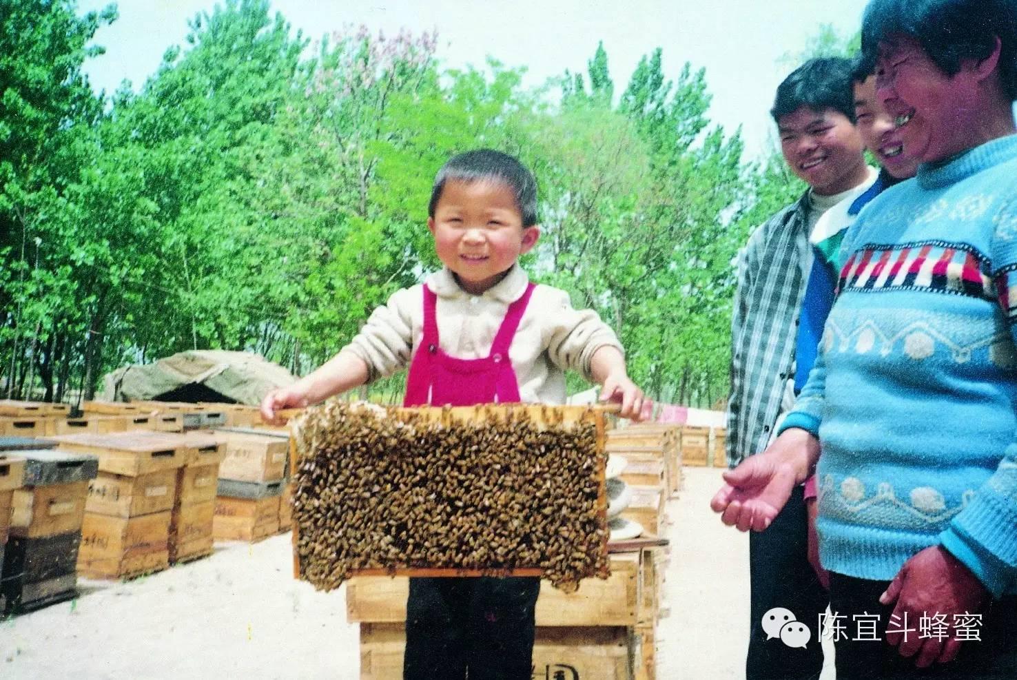 蜂蜜加盟 玫瑰蜂蜜茶 工艺流程 澳洲蜂蜜 野生土蜂蜜