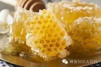 蜂蜜鉴别 饲养管理 蜂蜜睡眠面膜 蜂胶的副作用 蜂蜜面膜的作用