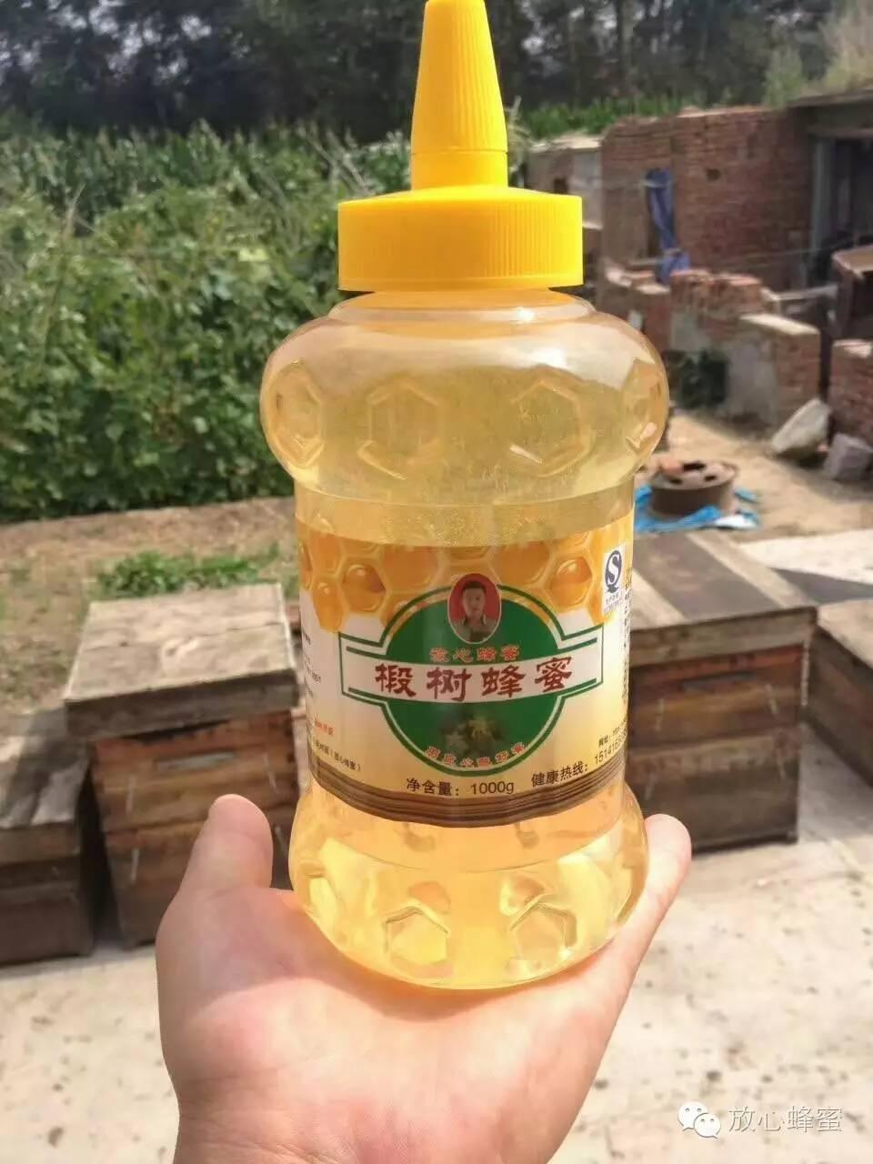 土蜂蜜结晶 蜂毒作用 纯天然的蜂蜜 洋槐蜂蜜的价格 老年人