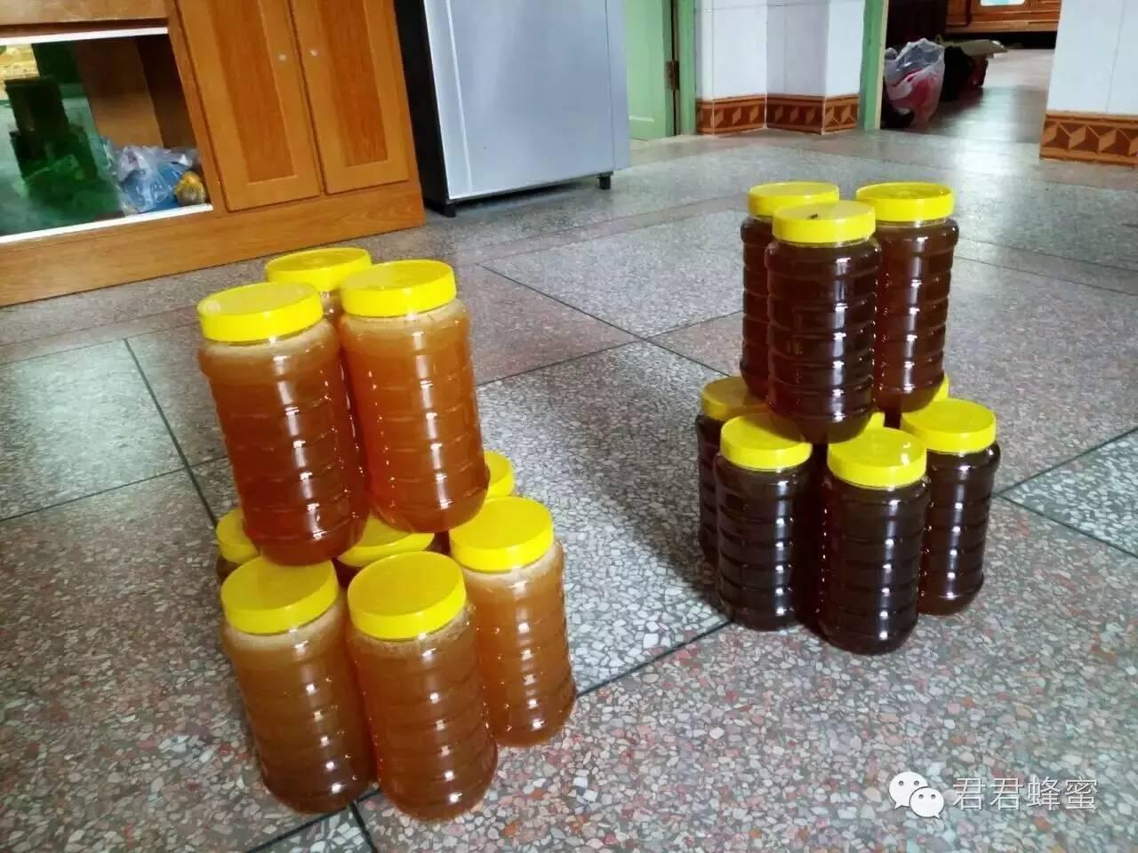 蜂蜜功效 什么样的蜂蜜好 什么蜂蜜比较好 常喝蜂蜜的好处 魔力