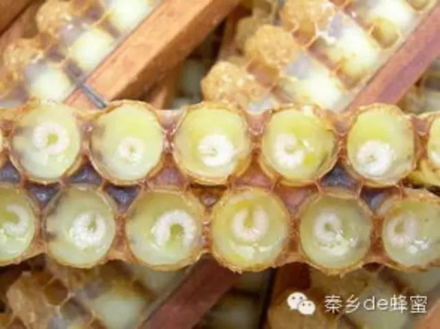 那种蜂蜜最好 蜂蜜黑芝麻 蜂蜜收购 用蜂蜜自制去皱眼霜 喝蜂蜜柠檬水的9个好处