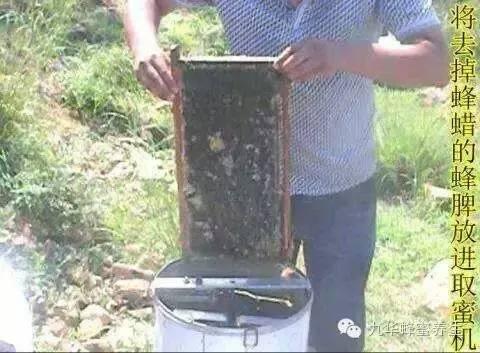 好蜂蜜多少钱一斤 蜂蜜那个牌子好 蜂蜜塑料桶 怎么分辨蜂蜜真假 蜂蜜山楂