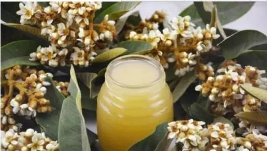 九寨沟蜂蜜 喝蜂蜜水有什么好处 怎样辨别蜂蜜 蜂蜜求购信息 土蜂蜜 纯天然