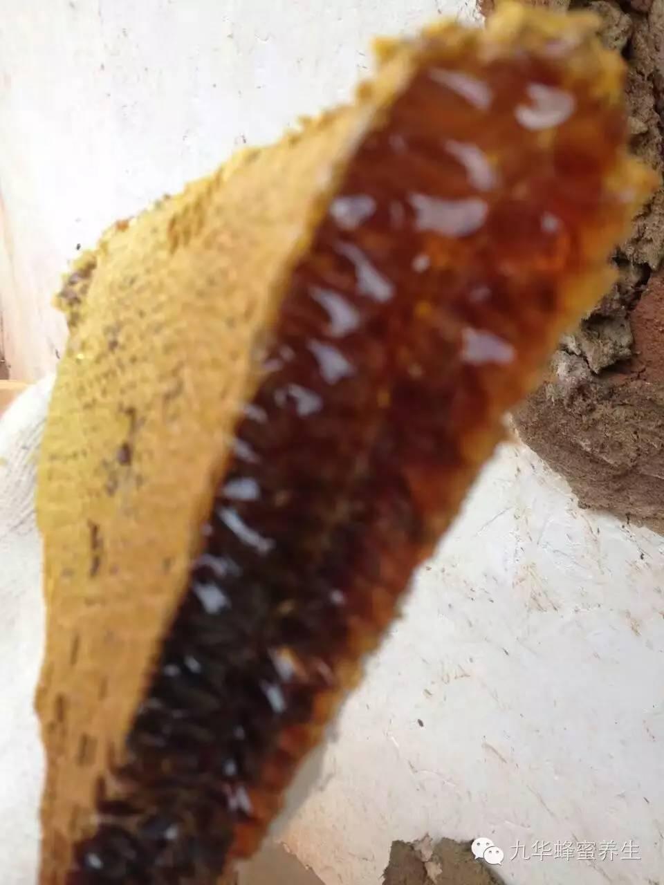 讲堂 什么品牌蜂蜜好 comvita蜂蜜 唐布拉黑蜂蜂蜜 野生土蜂蜜