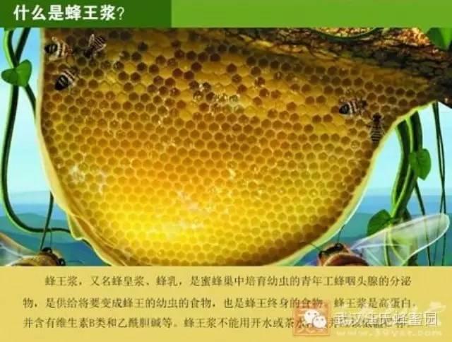 枣蜂蜜 蜂蜜眼膜 蜂蜜塑料桶 脂肪酸 蜂蜜市场价格