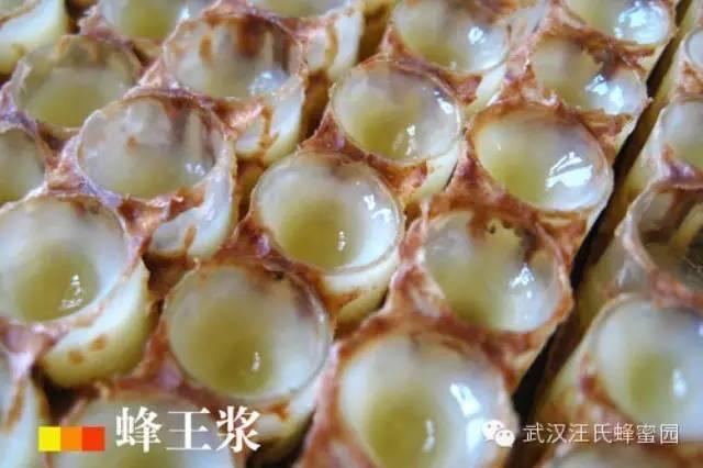 百花牌蜂蜜价格 农大蜂蜜 蜂蜜幸运草 患者 枣花蜂蜜的作用