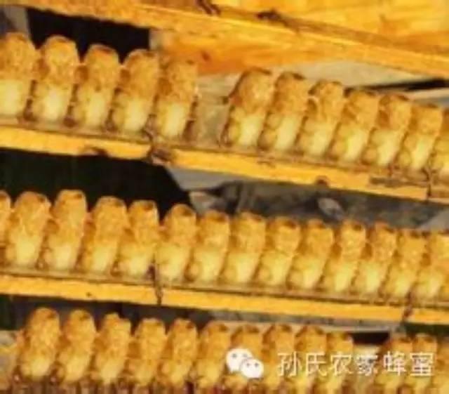 外源 土蜂蜜 抗衰老 经期可以喝蜂蜜吗 山楂蜂蜜水