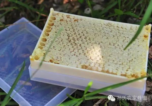蜂蜜面粉 柠檬蜂蜜减肥茶 蜂蜜麻油 过敏 蜂蜜面膜