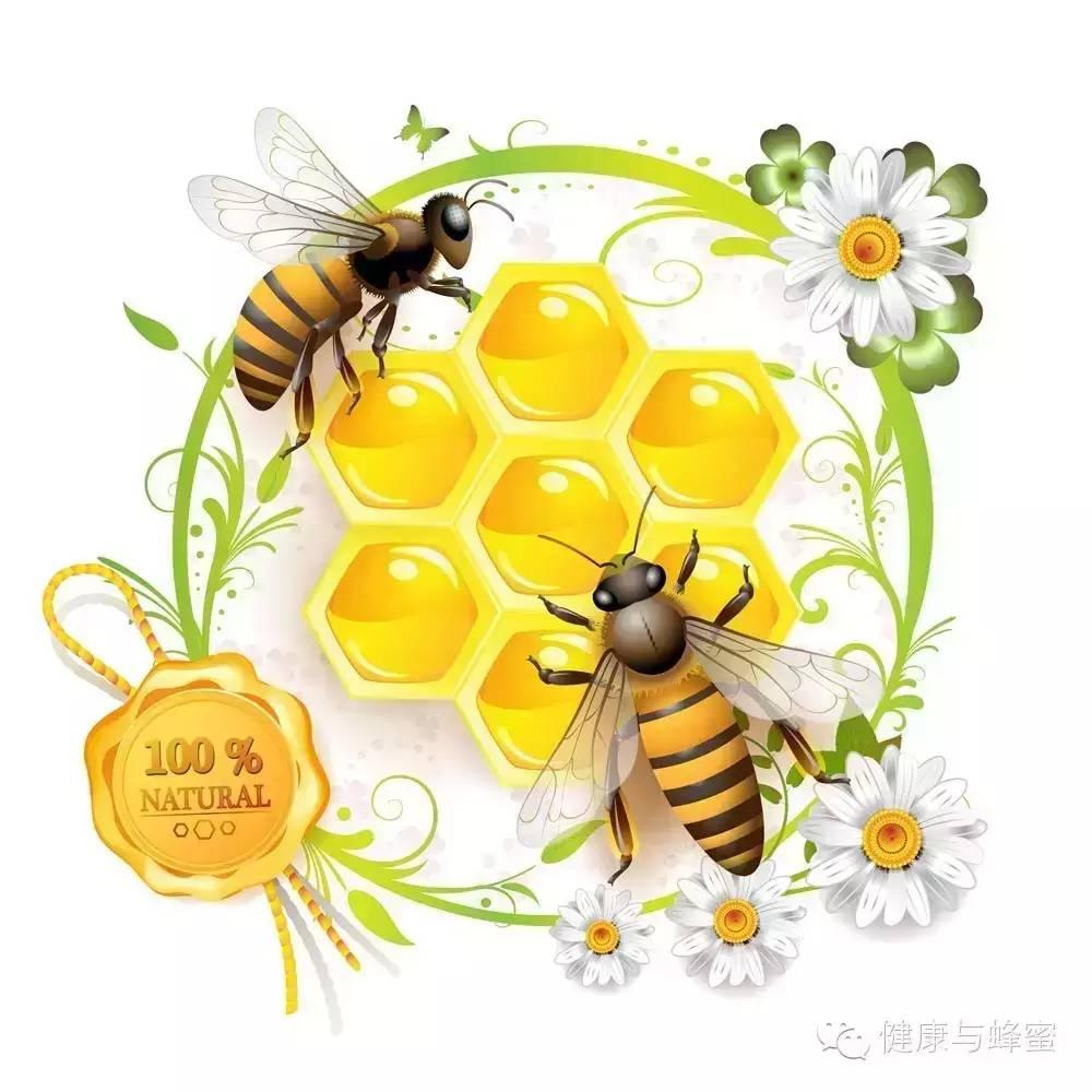 蜂蜜 蜂蜜什么牌子好 什么品牌的蜂蜜最好 面包 蜂蜜花粉