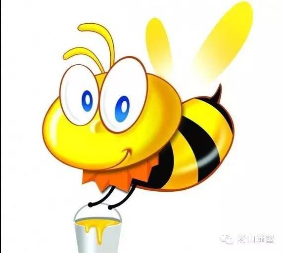 蜂蜜水果茶 红糖蜂蜜去黑头 那一种蜂蜜好 蜂蜜水作用 蜂群排列