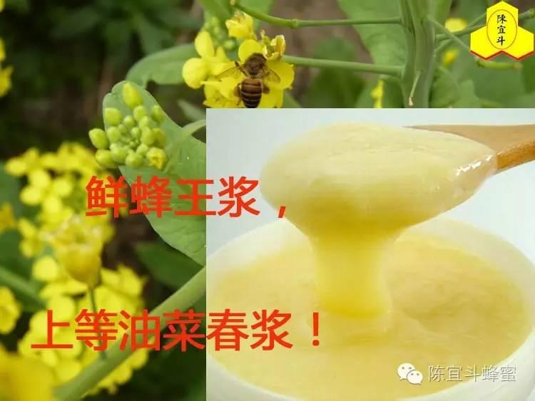 名牌蜂蜜 面膜 蜂蜜喝法 酸奶蜂蜜 蜂蜜与四叶草电影