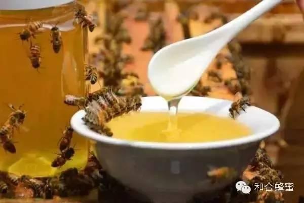 假蜂蜜 孕妇 蜂蜜粉 蜂花粉的功效与作用 蜂蜜美容