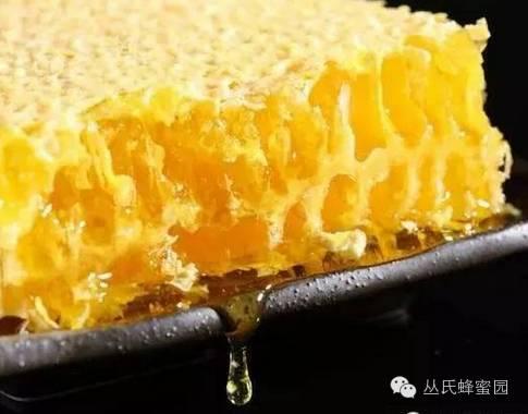 生殖系统 采蜜技术 蜂蜜食用 维生素 油菜花蜂蜜