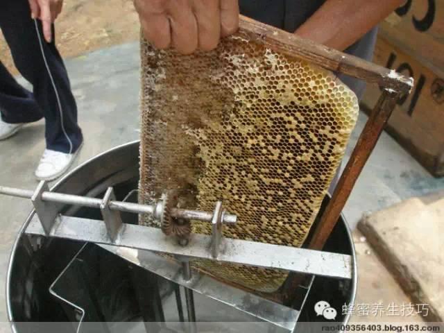 蜂蜜对人体之益处