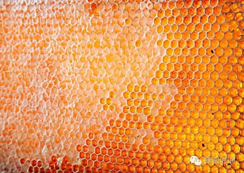 发展历程 糖尿病人能吃蜂蜜吗 蜂蜜柚子茶的做法 低血压 山楂蜂蜜
